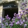 Journées Découverte des Troglos les samedi 8 et dimanche 9 juin