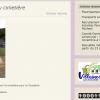 100 000 consultations du blog